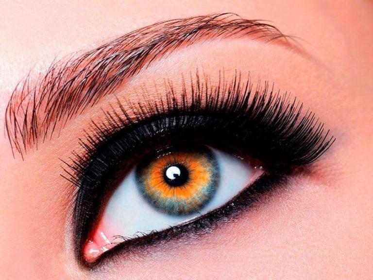 Eyebrows and eyelashes coloring